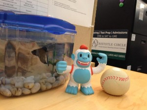 """@MailChimp thanks for the amazing Yeti Freddie! Here he is chilling with our fish, Michael Jackson #BestBuds"""