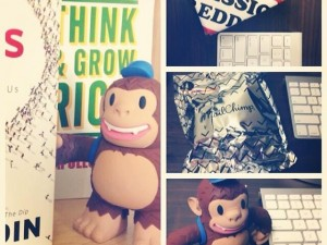 """Welcome new #freddie 🙈🙉🙊 @mailchimp taking over the book shelves."""